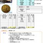 竹の子と 豚肉のXO醤炒め