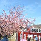 春は、ここから~成田廣文出張日誌