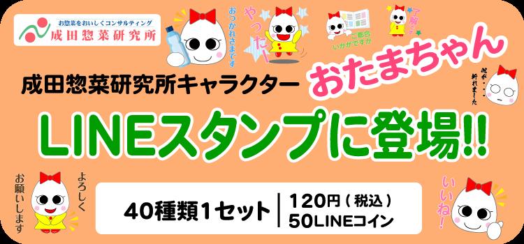 おたまちゃんLINEスタンプ成田惣菜研究所キャラクター