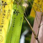 6月28日(金)〜「タコづくしフェア」~テーマと優先アイテム