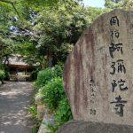西のあじさい寺~成田廣文出張日誌